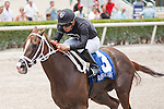 HALLANDALE BEACH, FL -JULY 02:   <br /> #3 Dearest with Emisael Jaramillo up wins the Azalea Stakes at Gulfstream Park on July 02, 2016 in Hallandale Beach, Florida. (Photo by Arron Haggart/Eclipse Sportswire/Getty Images)