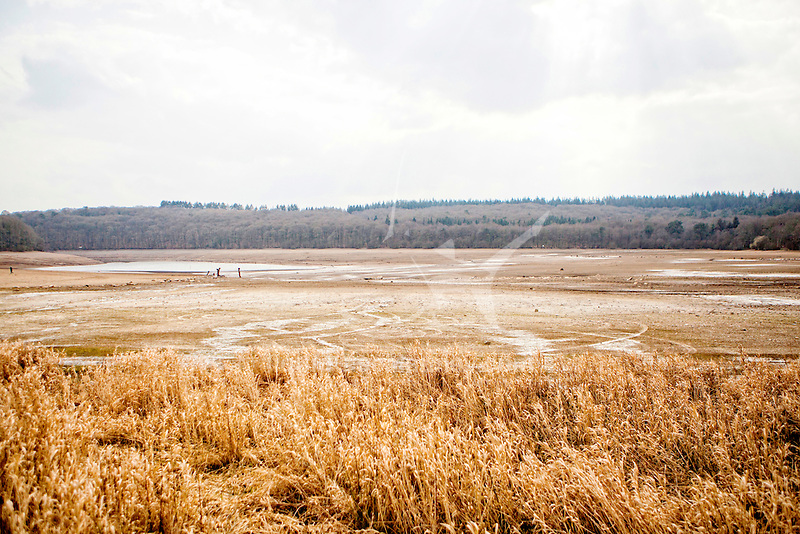 The Lac de Guerlédan is to be drained between April and November 2015, Côtes-d'Armor, Brittany, France.