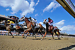 SARATOGA SPRINGS - AUGUST 27: Cavorting #5, ridden by Javier Castellano, wins the the Personal Ensign Stakes on Travers Stakes Day at Saratoga Race Course on August 27, 2016 in Saratoga Springs, New York. (Photo by Scott Serio/Eclipse Sportswire/Getty Images)