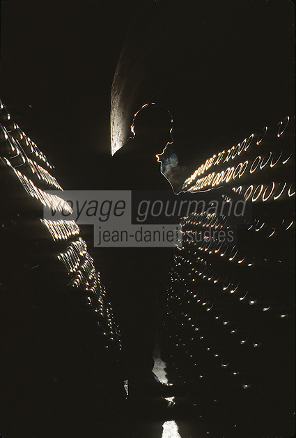 Europe/France/Champagne-Ardenne/51/Marne: Champagne Remueur dans les Caves