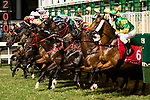 Jockeys riding their horses during the race 6 of during Hong Kong Racing at Happy Valley Race Course on November 08, 2017 in Hong Kong, China. Photo by Marcio Rodrigo Machado / Power Sport Images