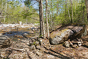 Campsite along the East Branch of the Pemigewasset River in the Pemigewasset Wilderness in Lincoln, New Hampshire. When the photographer came upon this campsite, the fire was still going, and the camp was vacant. He put the fire out and stayed at the site for over 20 minutes to make sure the fire was out.