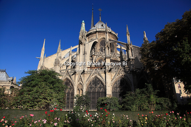 The east end of Notre Dame Cathedral with flying buttresses from Square Jean XXIII. city of Paris. Paris. France