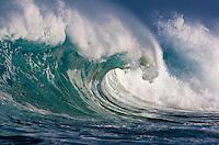 A powerful shore break wave at Ke Iki Beach on the North Shore of O'ahu.