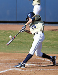 UC Davis' Mike Mazzarra at bat in a college baseball game between the Washington Huskies and the UC Davis Aggies in Davis, Ca., on Sunday, Feb. 17, 2013. Davis won 7-5 to finish their season opening series 3-1. .Photo by Cathleen Allison