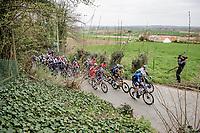 up the Kortekeer<br /> <br /> 105th Ronde van Vlaanderen 2021 (MEN1.UWT)<br /> <br /> 1 day race from Antwerp to Oudenaarde (BEL/264km) <br /> <br /> ©kramon