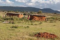 Tanzania.   Two Houses in Maasai Village of Ololosokwan, Northern Serengeti.