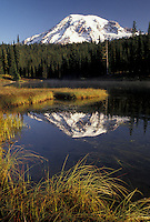AJ3706, Mount Rainier, Mt. Rainier National Park, Cascades, Cascade Range, Washington, Scenic view of the snow covered Mt. Rainier reflecting in the calm waters of Reflection Lake in the Cascade Mountain Range in Mount Rainier Nat'l Park in the state of Washington.