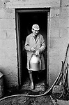 Farmer milking cows by hand using pump. 70s UK Gloucestershire 1970s Britain  Village life 1975 The Cotswolds.  Lower and Upper Slaughter are twin villages on the River Eye and are know as The Slaughters.  1975 <br /> <br /> <br /> <br /> <br /> Mr Kenneth Pugh Farmer milking cows.
