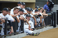 Morgan McSweeney (35) of the Wake Forest Demon Deacons hangs out on the top step of the dugout during the game against the Davidson Wildcats at David F. Couch Ballpark on May 7, 2019 in  Winston-Salem, North Carolina. The Demon Deacons defeated the Wildcats 11-8. (Brian Westerholt/Four Seam Images)