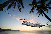 Relaxing in a hammock under a palm tree in the sun, Haleiwa Beach park, North Shore Oahu