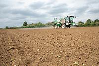 Applying herbicide to sugar beet - Lincolnshire, April