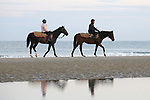 August 15, 2021, Deauville (France) - Racehorses after training at the beach in Deauville. [Copyright (c) Sandra Scherning/Eclipse Sportswire)]