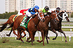 Regalo Mia with Javier Castellano up surges to front on her way to winning the Florida Sunshine Millions Filly and Mare Turf at Gulfstream Park.  Hallandale Beach Florida. 01-19-2013