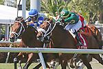 HALLANDALE BEACH, FL - MAR 3:  Maraud #2 with jockey John Velazquez on board, wins the Palm Beach G3 Stakes, at Gulfstream Park on March 3, 2018 in Hallandale Beach, Florida. (Photo by Liz Lamont/Eclipse Sportswire/Getty Images)