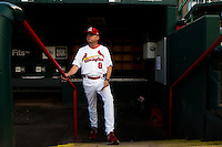 Manager Mike Shildt (8) of the Springfield Cardinals stands on the dugout steps prior to a game against the Northwest Arkansas Naturals at Hammons Field on August 23, 2013 in Springfield, Missouri. (David Welker/Four Seam Images)