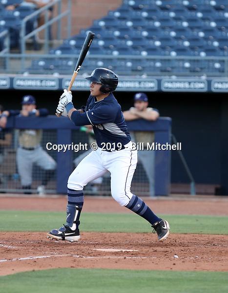 Brandon Valenzuela - 2019 AZL Padres (Bill Mitchell)