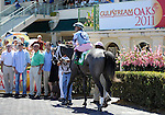 Mayday Maria (no. 5), ridden by Joe Bravo and trained by Todd Pletcher, wins the 4th race on April 2, 2011 at Gulfstream Park in Hallandale Beach, Florida.  (Bob Mayberger/Eclipse Sportswire)