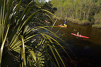 A group of paddlers work their kayak's down a river in Amelia Island, FL