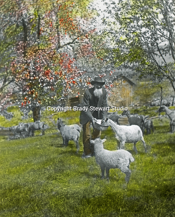 Jerome ID: A Sheepherder feeding the flock.   Brady Stewart and three friends went to Idaho on a lark from 1909 thru early 1912.  As part of the Mondell Homestead Act, they received a grant of 160 acres north of the Snake River.  Brady Stewart photographed the adventures of farming along with the spectacular landscapes. To give family and friends a better feel for the adventure, he hand-color black and white negatives into full-color 3x4 lantern slides.  The Process:  He contacted a negative with another negative to create a positive slide.  He then selected a fine brush and colors and meticulously created full-color slides.
