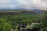 Maunalei Gulch