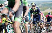 Alejandro Valverde (ESP/Movistar) up the very steep Gulperberg (max 19%)<br /> <br /> Amstel Gold Race 2014