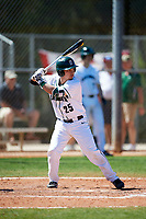 Dartmouth Big Green third baseman Justin Fowler (25) at bat during a game against the Villanova Wildcats on March 3, 2018 at North Charlotte Regional Park in Port Charlotte, Florida.  Dartmouth defeated Villanova 12-7.  (Mike Janes/Four Seam Images)