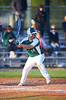 Farmingdale State Rams Domenic Palumbo (14) at bat during the second game of a doubleheader against the FDU-Florham Devils on March 15, 2017 at Lake Myrtle Park in Auburndale, Florida.  FDU-Florham defeated Farmingdale 8-4.  (Mike Janes/Four Seam Images)