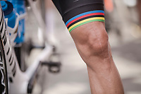 World Champion Alejandro Valverde's (ESP/Movistar) showing his colours (and scars) at the race start in Ans<br /> <br /> 83rd La Flèche Wallonne 2019 (1.UWT)<br /> One day race from Ans to Mur de Huy (BEL/195km)<br /> <br /> ©kramon