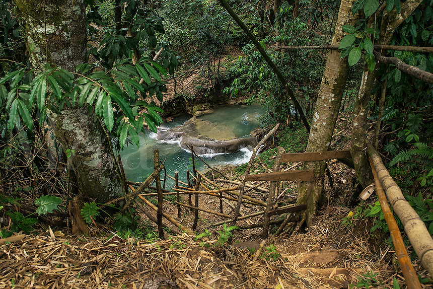 Rustic stair path leading down to Mayfield Falls, Jamaica