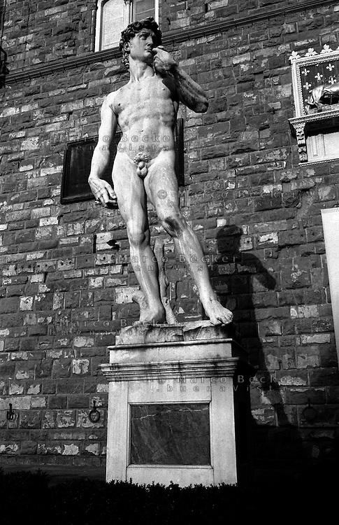 Firenze, la copia del David di Michelangelo Buonarroti in piazza della Signoria --- Florence, replica of the David of Michelangelo Buonarroti in front of Palazzo Vecchio