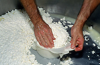 GOAT MILK CURDS are hand molded during the CHEESE MAKING PROCESS at JUNIPER GROVE FARM - REDMOND, OREGON