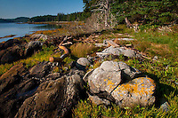 Boulder on Beach at Holbrook Island Sanctuary, Brooksville, Maine, US