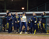 Michigan Wolverines Softball bench cheers a run during a game against the University of South Florida Bulls on February 8, 2014 at the USF Softball Stadium in Tampa, Florida.  Michigan defeated USF 3-2.  (Copyright Mike Janes Photography)