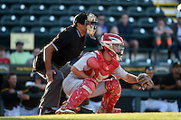 Umpire Charlie Ramos and Palm Beach Cardinals catcher Casey Rasmus (5) during a game against the Bradenton Marauders on April 9, 2014 at McKechnie Field in Bradenton, Florida.  Palm Beach defeated Bradenton 3-1.  (Mike Janes/Four Seam Images)