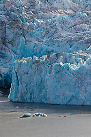 Tourists kayak by the face of Nellie Juan Glacier,  Nellie Juan Lagoon, Prince William Sound, Chugach National Forest, Kenai Peninsula, southcentral, Alaska.