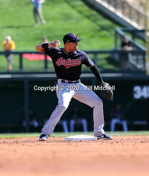 Cesar Hernandez - Cleveland Indians 2020 spring training (Bill Mitchell)