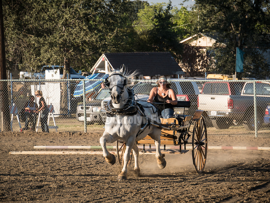 2nd day of the 76th Amador County Fair, Plymouth, Calif.