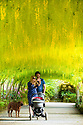 16/05/19<br /> <br /> Abigail Herron and Thomas Southworth pose for a selfie with their dog, Honey. admire the Laburnum Arch.<br /> <br /> Mild weather and sunshine has coaxed one of the UK's longest and oldest Laburnum arches, at the National Trust's Bodnant Garden near Conwy, into flower two weeks earlier than normal. Planted in 1880, the arch is the most visited, photographed, Facebooked and 'selfied' feature of the garden, with around 50,000 visitors during its three-week flowering season.<br /> <br /> All Rights Reserved, F Stop Press Ltd +44 (0)7765 242650 www.fstoppress.com rod@fstoppress.com