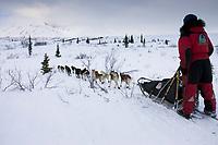 Lance Mackey on Trail Leaving Rainy Pass Chkpt AK 2005 Iditarod