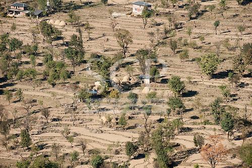 Dharamsala, Himachal Pradesh, India. Smallholding on terraced land.