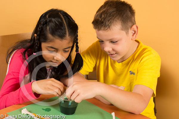 Education elementary science activity 4th grade students ages 9-10