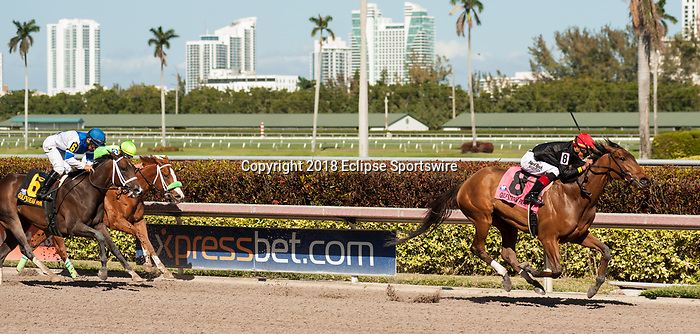 HALLANDALE BEACH, FL - March 3: Fly So High, #8, with Jose Ortiz aboard, wins the Grade II Davona Dale Stakes well ahead of Take Charge Paula and Heavenhasmynikki at Gulfstream on March 3, 2018 in Hallandale Beach, FL. (Photo by Carson Dennis/Eclipse Sportswire/Getty Images.)