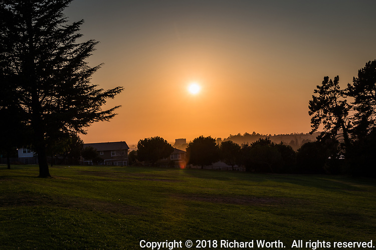 An hour and a half before sunset, wild fire smoke paints the western sky orange as viewed from the San Felipe Community Park looking west toward San Francisco Bay.