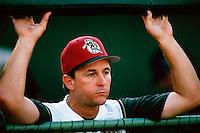San Bernardino Stampede Manager Tim Wallach during a game at Arrowhead Credit Union Park in San Bernardino, California during the 1997 season.(Larry Goren/Four Seam Images)