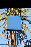 Palm trees reflect in windows of a modern building in Bonifacio, Corsica, France. Bonifacio is known for its lively marina and medieval clifftop citadel.