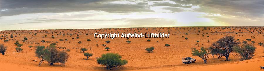 Kalahari: NAMIBIA, AFRIKA, 03.12.2019: Kalahari