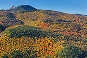 Autumn foliage from along the Boulder Loop Trail. This trail is located off of the Kancamagus Highway (route 112) in the White Mountains, New Hampshire.  Mount Chocorua is in the distance.