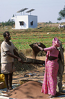INDIA, Karnataka, solar panels for electric water pump at farm near Bangalore, farmer thresh pulses /  INDIEN, Photovoltaik Anlage fuer Antrieb einer Wasserpumpe auf einem Bauernhof  bei Bangalore, Bauern dreschen Hirse