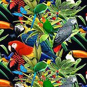 Howard, GIFT WRAPS, GESCHENKPAPIER, PAPEL DE REGALO, paintings+++++,GBHR95A,#GP# ,everyday